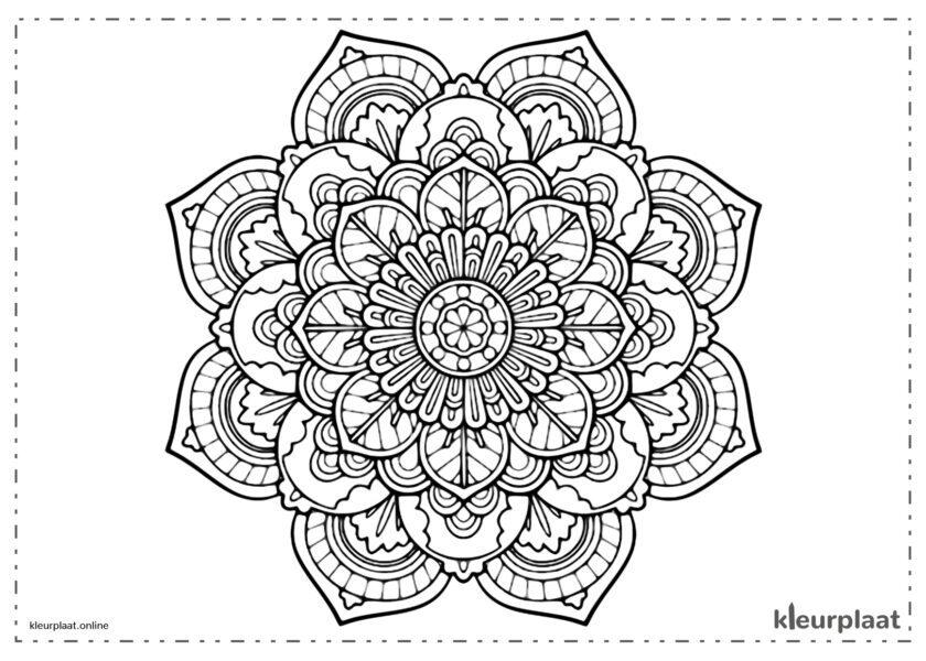 bloem mandala bloemen mooie kleurplaat mandala tekenen