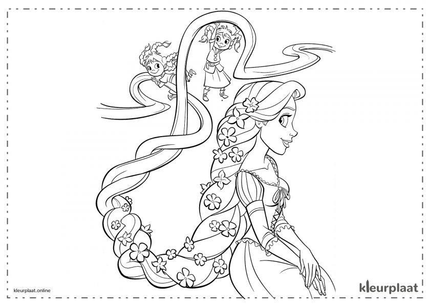 de Prinses Rapunzel met het zeer lange haar