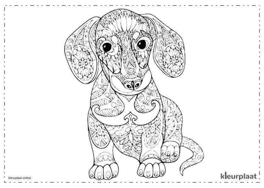 Mandala hond kleurplaat mandala tekenen