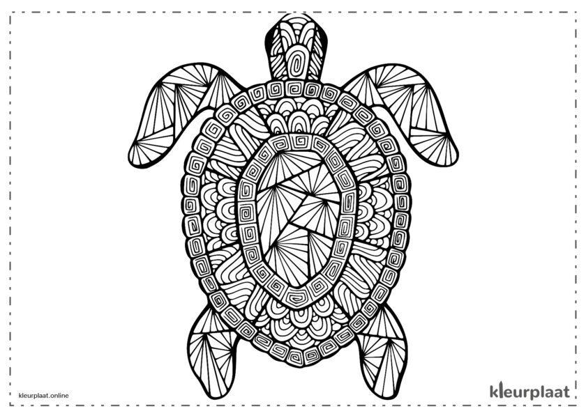 Mandala schildpad mandala tekenen