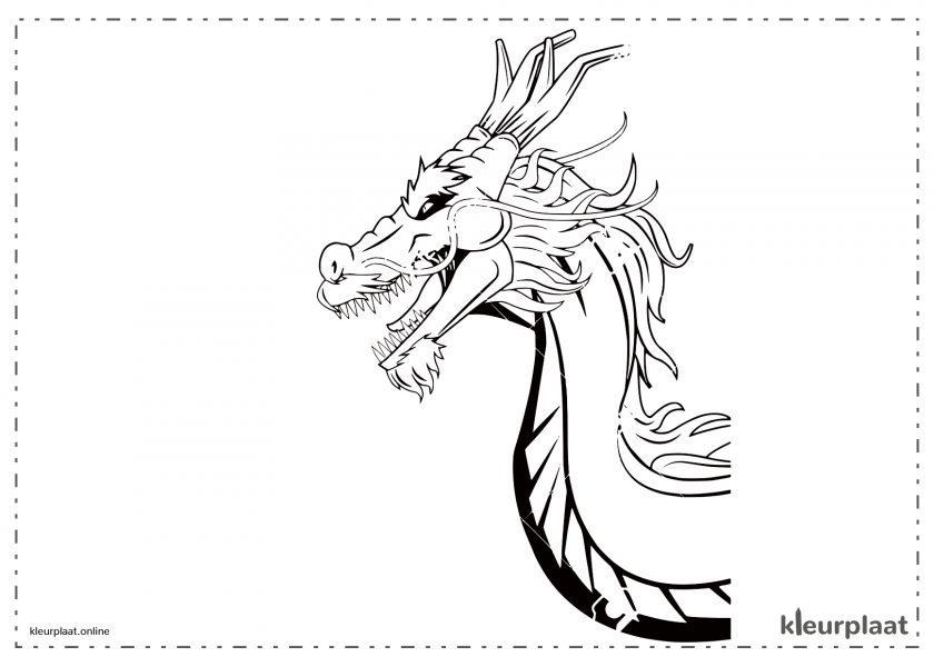 Chinese drakenkop