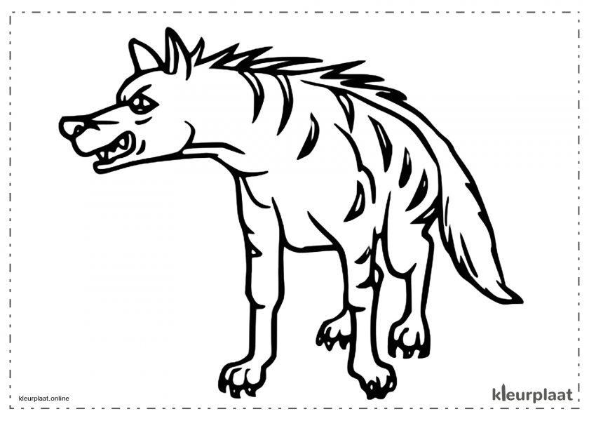 Gestreepte hyena die aan zijn prooi grinnikt