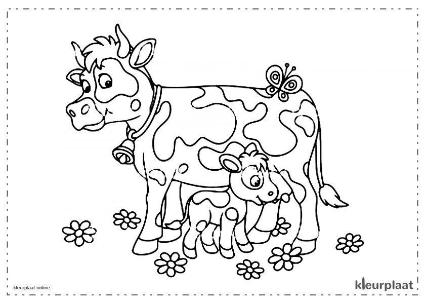 Koe Melken en kalf