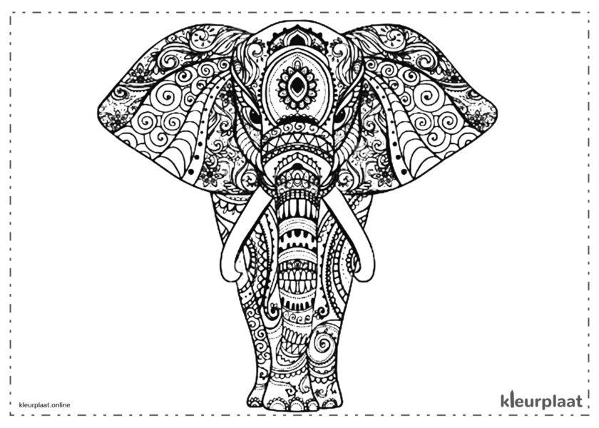 Mandala kleurplaat olifanten tekenen