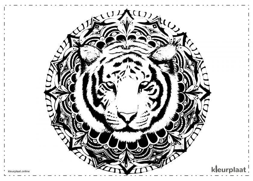 Mandala Tijger