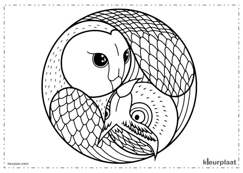 Mandala uil eenvoudig kleurplaat mandala tekenen