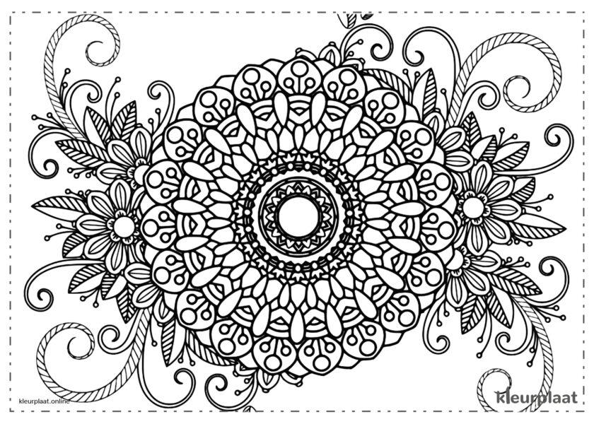 Mandala van bloemen bloem erg mooi