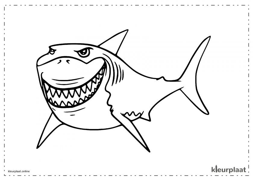 Monster haai