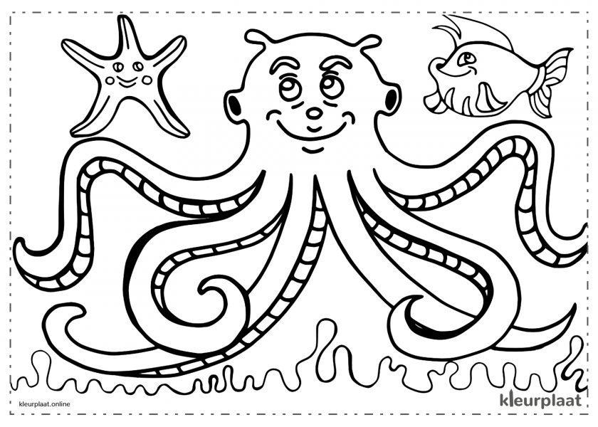 Octopus met vis en zeesterren