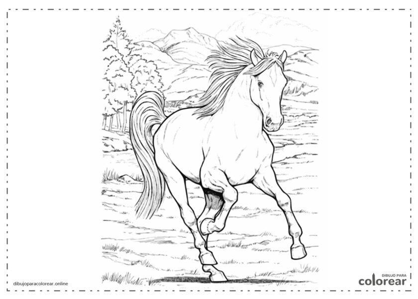 Paard moeilijk