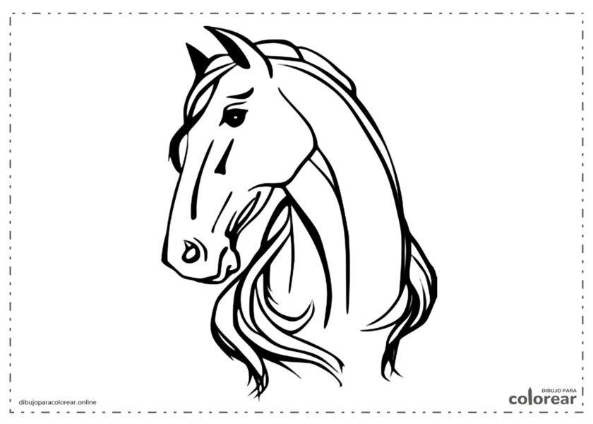 Paardenhoofd kleurplaten
