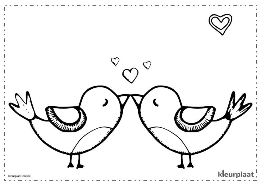 Kus van vogels op Valentijnsdag